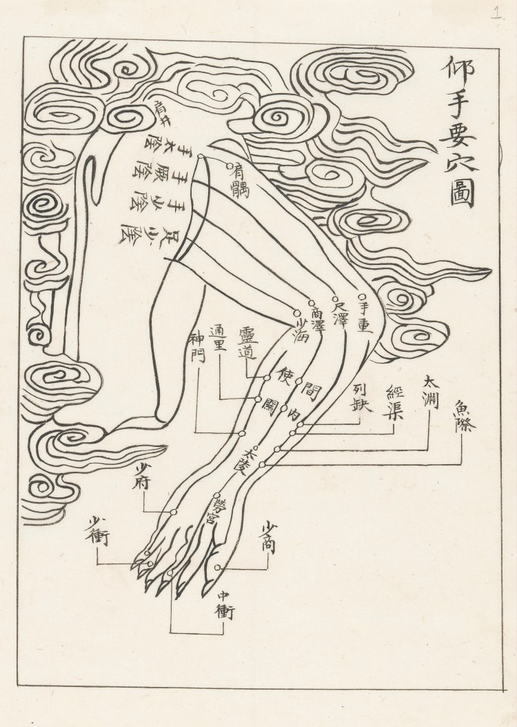 L0043615 Acupuncture points and meridians. The arm.